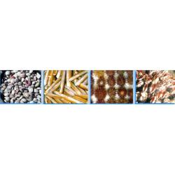 Curso de Comercialización de Produtos do Mar